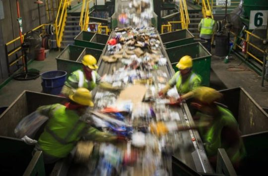 Commercial Recycling Tampa